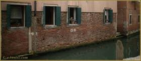 Petit chat vénitien à sa fenêtre, le long du rio de Sant'Andrea o dei Gozzi o Sartori, dans le Sestier du Cannaregio à Venise