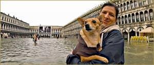 Acqua Alta Venise: Toutou bien au sec dans les bras de sa maîtresse, sur la Piazza San Marco, au centre des Procuratie Nove et Vechie, dans le Sestier de Saint-Marc à Venise.