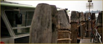 Alignement de Pali (poteaux d'amarrage, Palo au singulier), sur les Fondamente Nove, dans le Sestier du Cannaregio à Venise.