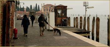 Toutou qui promène son maître sur les Fondamente Nove, dans le Sestier du Cannaregio à Venise.