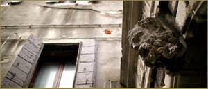 Sculptures au-dessus de la porte d'entrée du Palazzo Bragadin Carabba, où habitait Giacomo Casanova pendant 9 ans, ramo Bragadin, dans le Sestier du Castello à Venise.