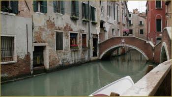 Pigeons sur le pont de le Erbe, dans le Sestier du Cannaregio à Venise
