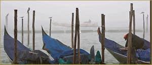 Brouillard sur le bassin de Saint-Marc à Venise.
