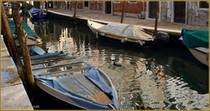 Cormoran, sur le rio de San Barnaba, dans le Sestier du Dorsoduro à Venise.