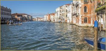 Les dimanches de Venise avec cette Caorlina à 6 rameurs dans le soleil du Grand Canal.