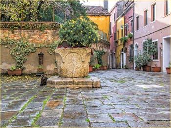 Le chat et le puits du Campiello de le Erbe, dans le Sestier du Cannaregio à Venise.