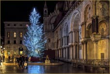 Le Sapin de Noël de la place Saint-Marc