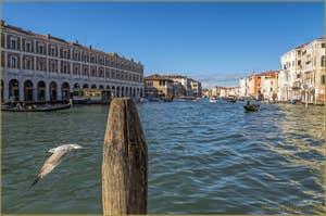Les Fabbriche Nove et la Pescaria du Rialto, le long du Grand Canal de Venise.