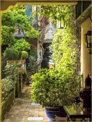 Jardins Secrets à Venise