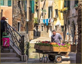 Livraison de Fleurs Rio Terà Sant'Aponal, dans le Sestier de San Polo à Venise.