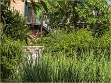 Jardin privé et son puits