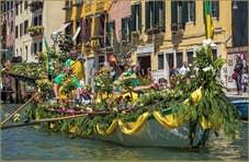Vogalonga de Venise Caorline en fleurs