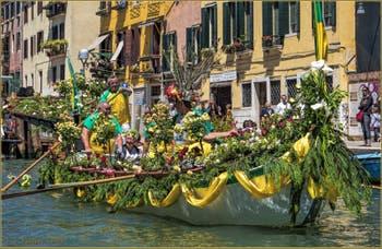 Caorline en fleurs sur le Canal de Cannaregio lors de la Vogalonga de Venise.