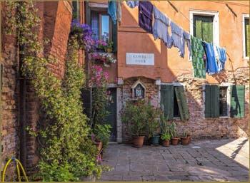 La jolie petite Corte Rota et son jasmin, dans le Sestier du Castello à Venise.