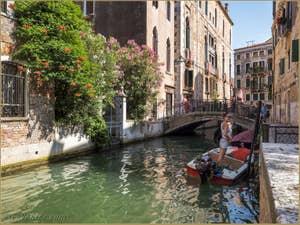 Laurier Rose Rio de la Panada, dans le Cannaregio à Venise.