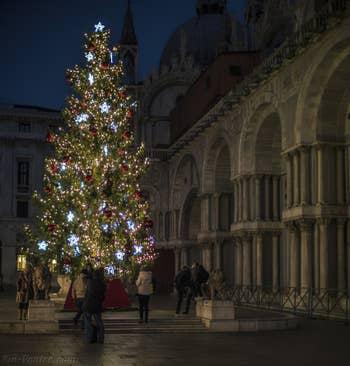 Sapin de Noël Place Saint-Marc à Venise.