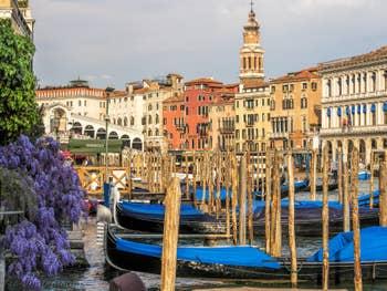 Glycine et Gondoles sur le Grand Canal à Venise.