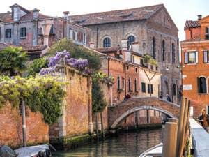 Glycine au pont de la Racheta, dans le Cannaregio à Venise.