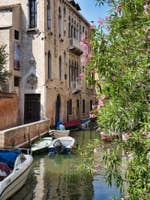 Lauriers-roses Palazzo Van Axel à Venise