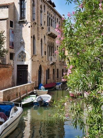 Le Palazzo Van Axel et le Rio de la Panada, dans le Cannaregio à Venise.
