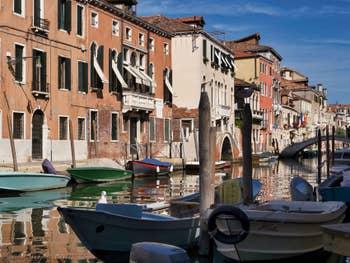 Mouettes dans les reflets du Rio de la Sensa, dans le Cannaregio à Venise.
