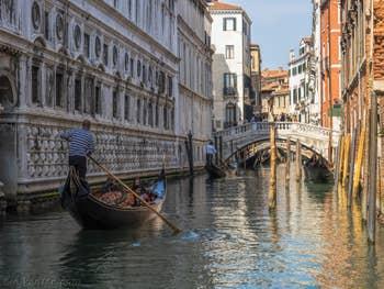 Gondoles le long du Palais des Doges à Venise.