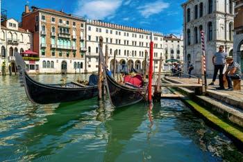 Gondoles sur le Grand Canal de Venise devant le Fondaco dei Tedeschi et le palais dei Camerlenghi, le long du Campo de l'Erbaria, dans le Sestier de San Polo à Venise.