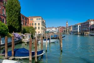 Glycine sur le Grand Canal de Venise