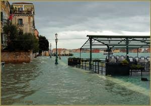 L'acqua alta record du 1er décembre 2008 sur les Zattere à Venise.