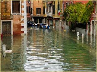 L'acqua alta record du 1er décembre 2008 à Venise.