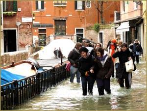 L'acqua alta record du 1er décembre 2008 dans la bonne humeur à Venise.