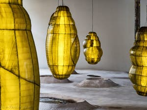 Anicka Yi, Biologizing the Machine, Tentacular Trouble à la Biennale d'Art de Venise 2019