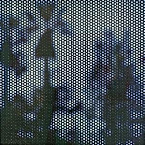 Anthony Hernandez, Screened Pictures #31, à la Biennale de Venise
