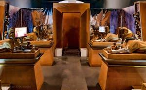 L'entrée du sanctuaire depuis la salle des Sphinx de Khnum au Pavillon égyptien de la Biennale d'Art de Venise 2019