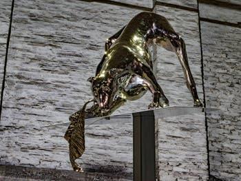 Liliana Moro, Anemos, Pavillon Italie à la Biennale d'Art de Venise