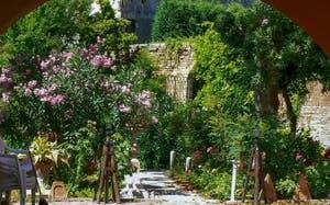 Jardins et lauriers roses sur l'île de Murano à Venise