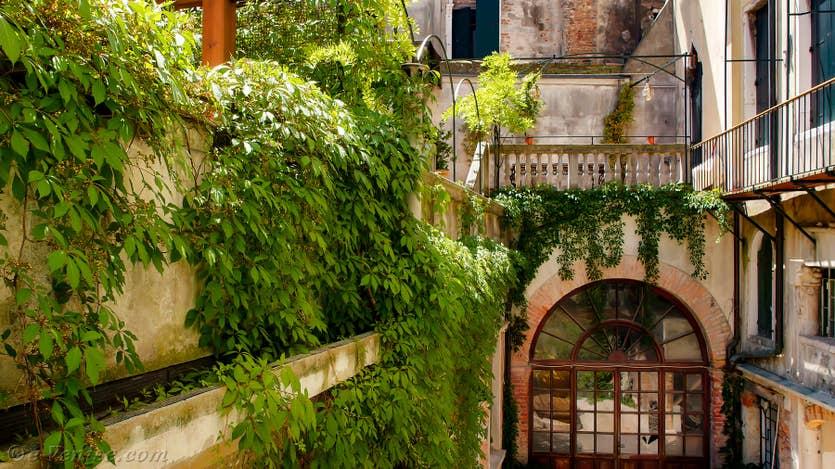 Location Cristie Terrasse à Venise, la vue