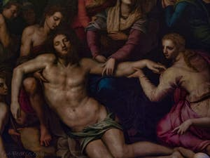 Bronzino, Sarto, Daddi