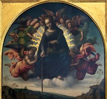 Francesco Granacci, Madonna della Cintola, Vierge à la ceinture, huile sur bois, 1500-1520, Galerie de l'Accadémia à Florence en Italie
