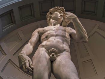Le David de Michel-Ange à l'Accademia