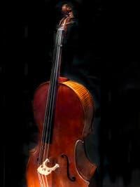 Antonio Stradivarius, Violoncelle du Quintet Médicis fabriqué à Cremone pour le Grand Duc Ferdinand en 1690, Musée des instruments musicaux de la Galerie de l'Accademia à Florence Italie
