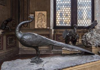 Bartolomeo Ammannati, Paon, 1567, Musée du Bargello à Florence Italie