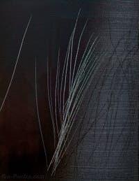 Hans Hartung, T 1962-E-15, au musée Peggy Guggenheim à Venise