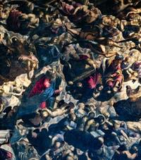 Le Paradis de Tintoret, saint Jean-Baptiste, Moïse, les rois David et Salomon,  au Palais des Doges de Venise