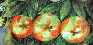 Le Tintoret, Trois Pommes, huile sur toile à la Scuola Grande San Rocco à Venise