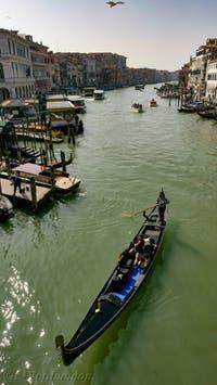 Gondole passant sous le pont du Rialto sur le Grand Canal de Venise