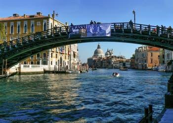 Le pont de l'Accademia sur le Grand Canal de Venise