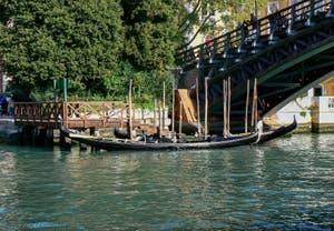 Gondoles au pied du pont de l'Accademia sur le Grand Canal de Venise