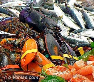Homards et Sardines les couleurs de la Pescheria